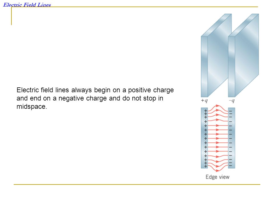 Electric field lines always begin on a positive charge