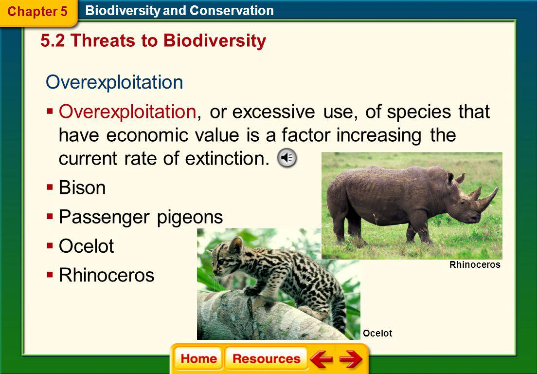 Chapter 5 Biodiversity and Conservation. 5.2 Threats to Biodiversity. Overexploitation.
