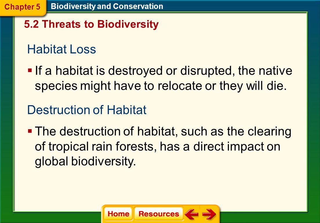 Destruction of Habitat