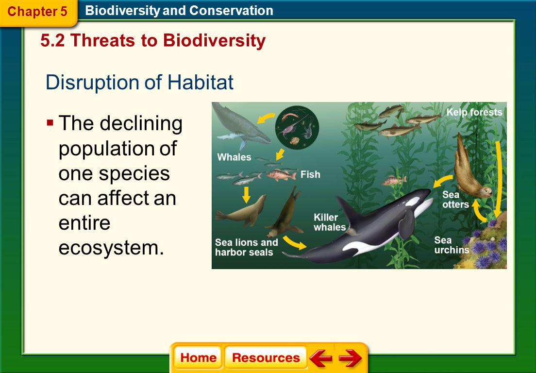Chapter 5 Biodiversity and Conservation. 5.2 Threats to Biodiversity. Disruption of Habitat.