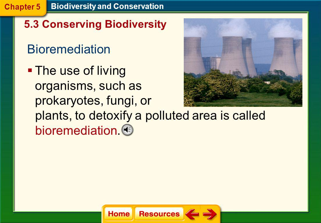 The use of living organisms, such as prokaryotes, fungi, or