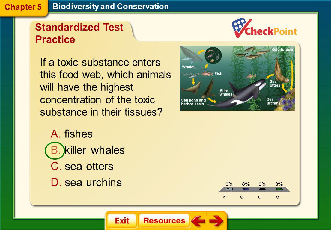 fishes killer whales sea otters sea urchins Standardized Test Practice