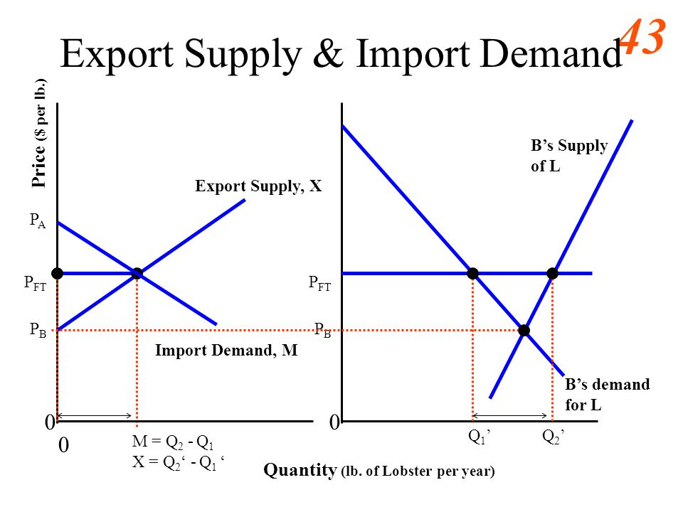 Export Supply & Import Demand