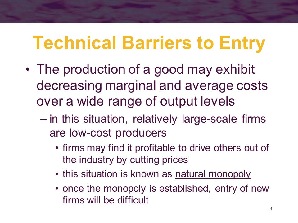 Technical Barriers to Entry