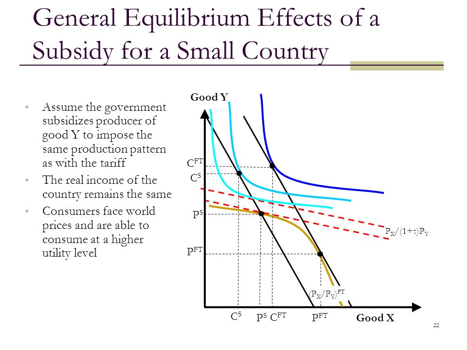 General Equilibrium Effects of a Subsidy for a Small Country