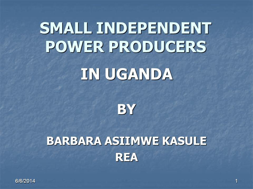SMALL INDEPENDENT POWER PRODUCERS