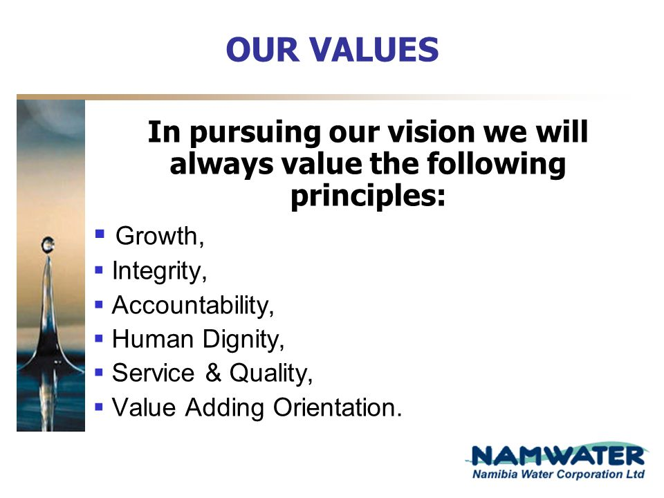 In pursuing our vision we will always value the following principles: