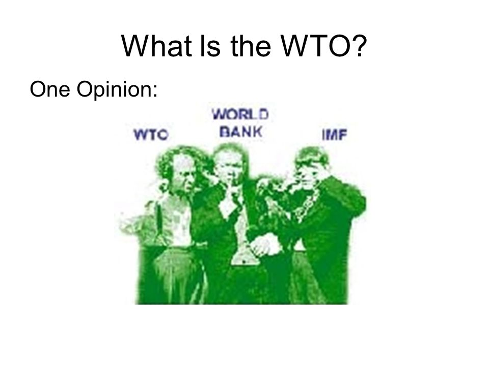 What Is the WTO One Opinion: