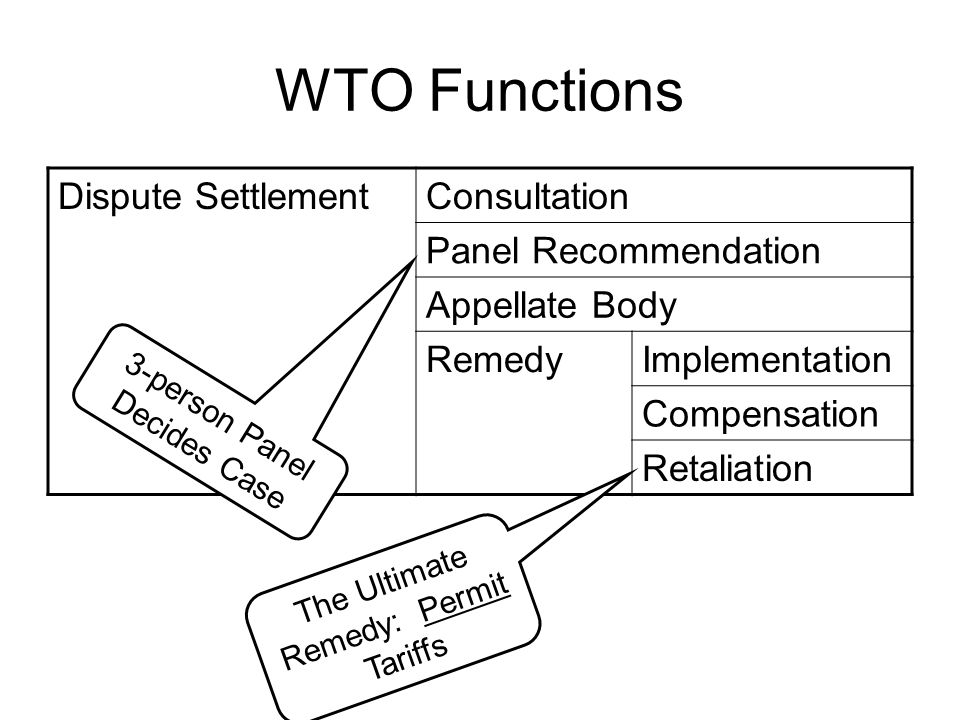 WTO Functions Dispute Settlement Consultation Panel Recommendation