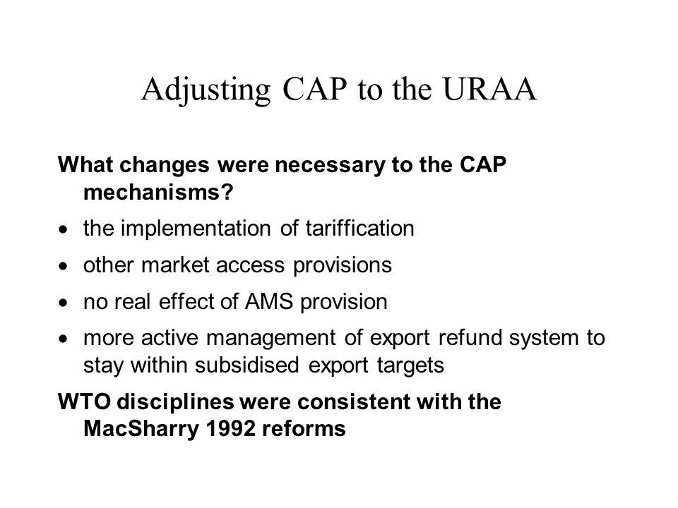Adjusting CAP to the URAA