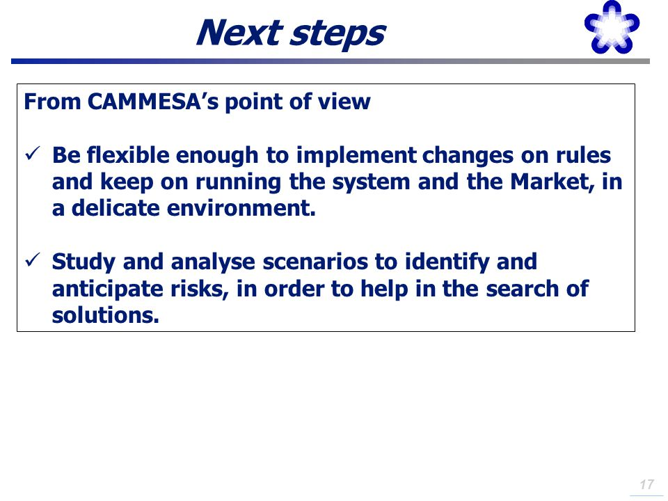 Next steps From CAMMESA's point of view