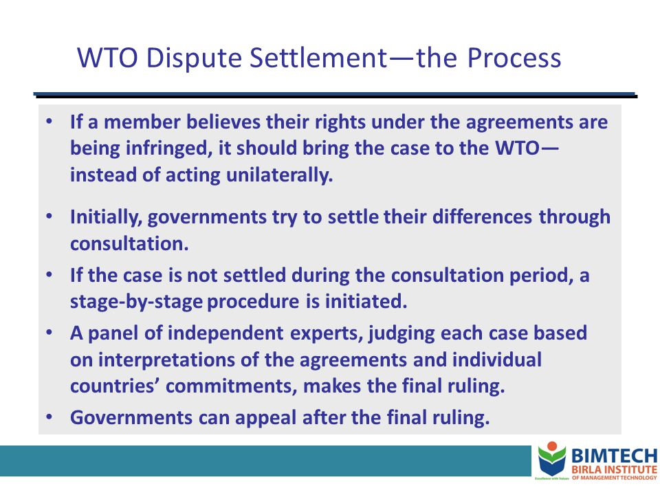 WTO Dispute Settlement—the Process