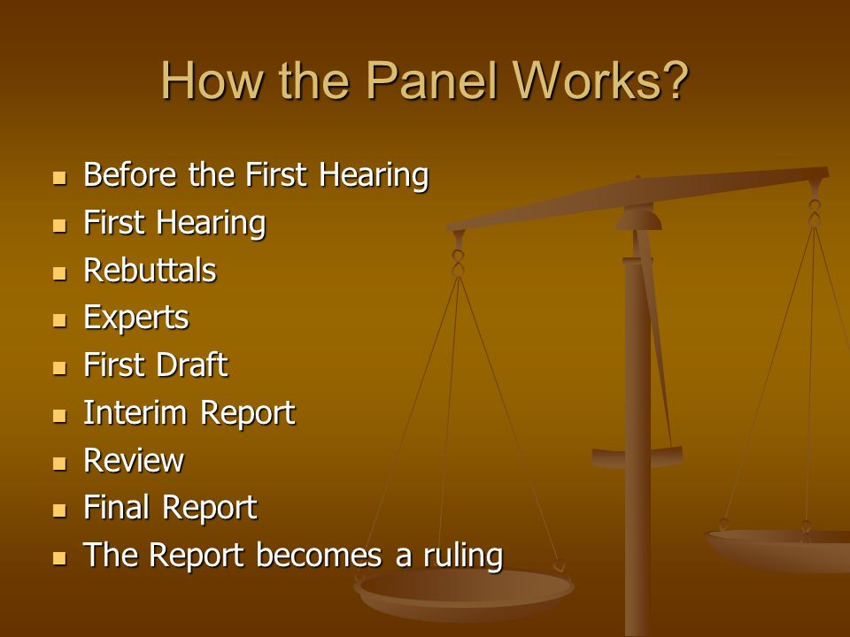 How the Panel Works Before the First Hearing First Hearing Rebuttals