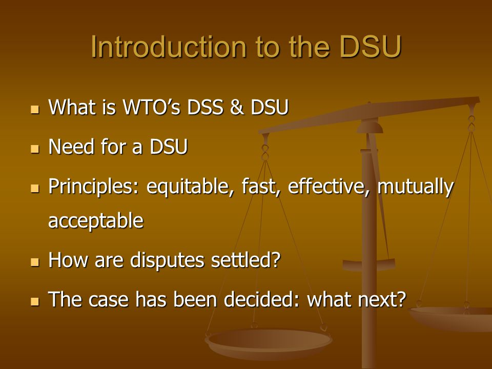 Introduction to the DSU