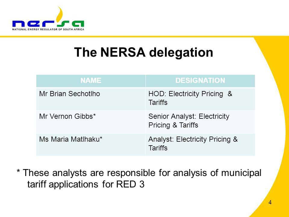 The NERSA delegation * These analysts are responsible for analysis of municipal tariff applications for RED 3.