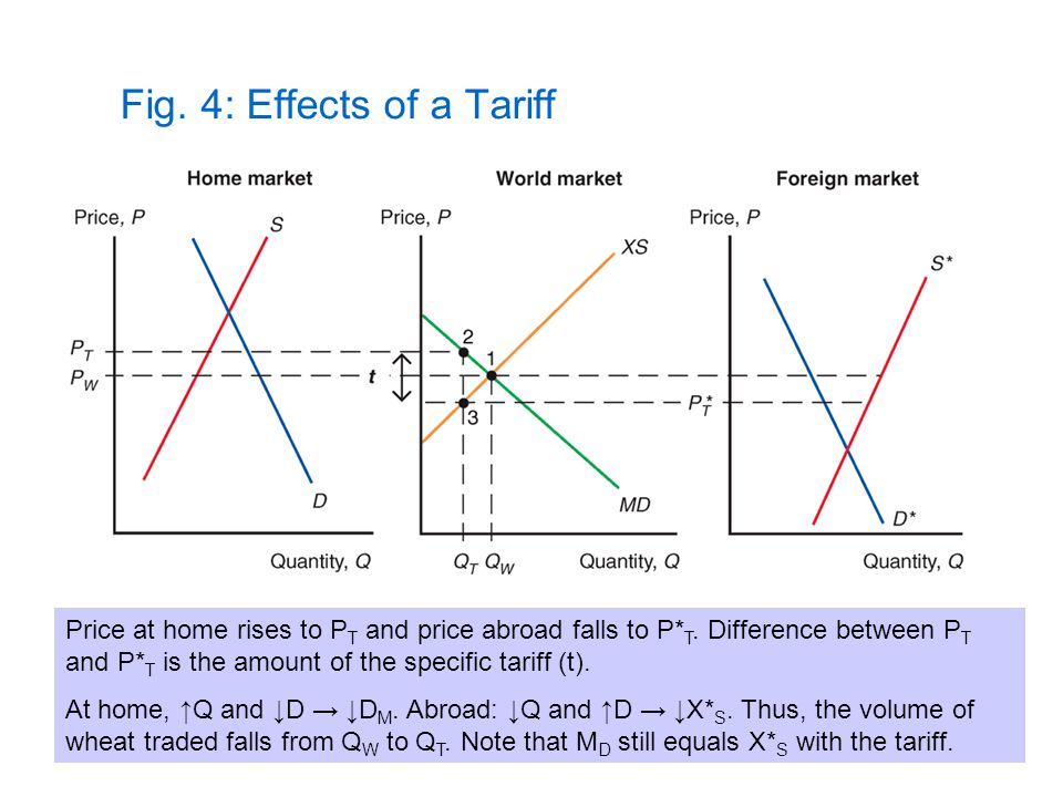 Fig. 4: Effects of a Tariff