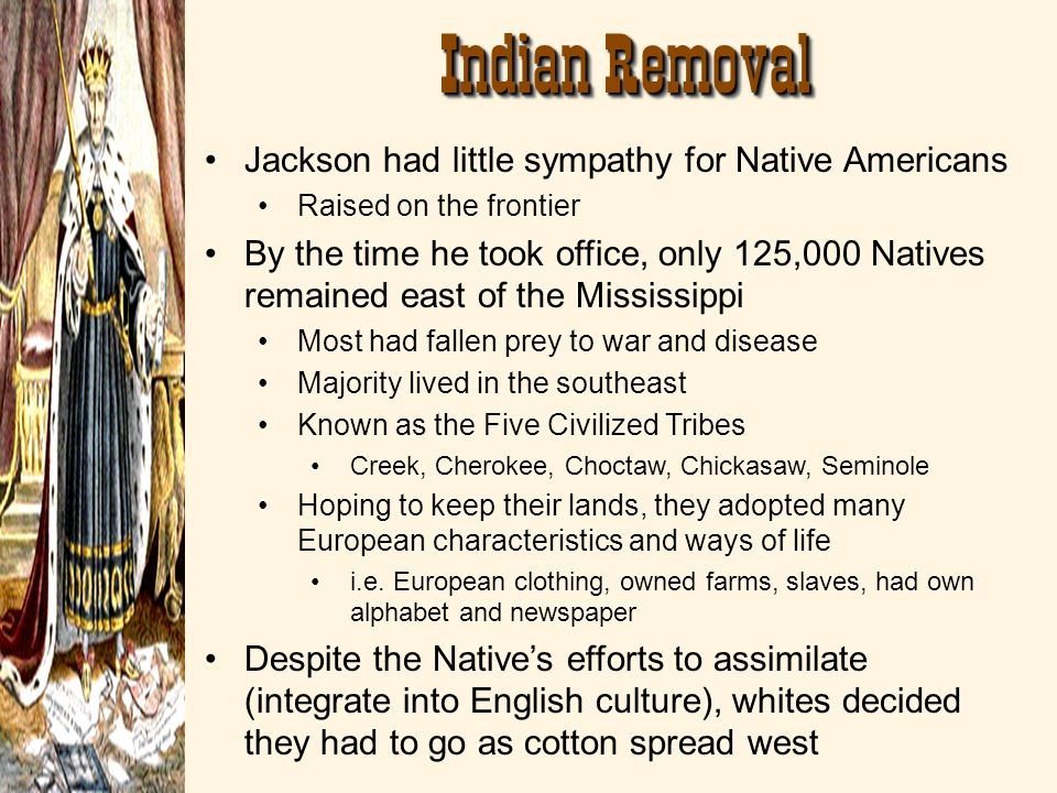 Indian Removal Jackson had little sympathy for Native Americans