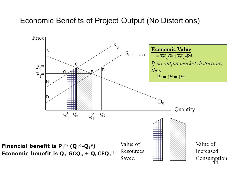 Economic Benefits of Project Output (No Distortions)