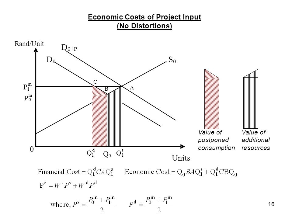 Economic Costs of Project Input