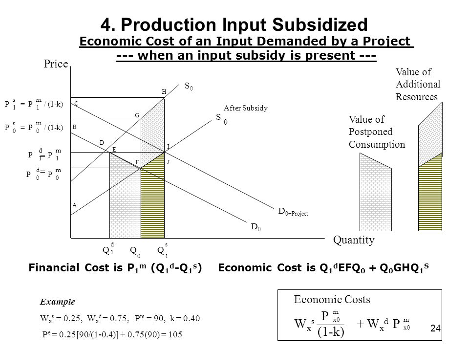 4. Production Input Subsidized