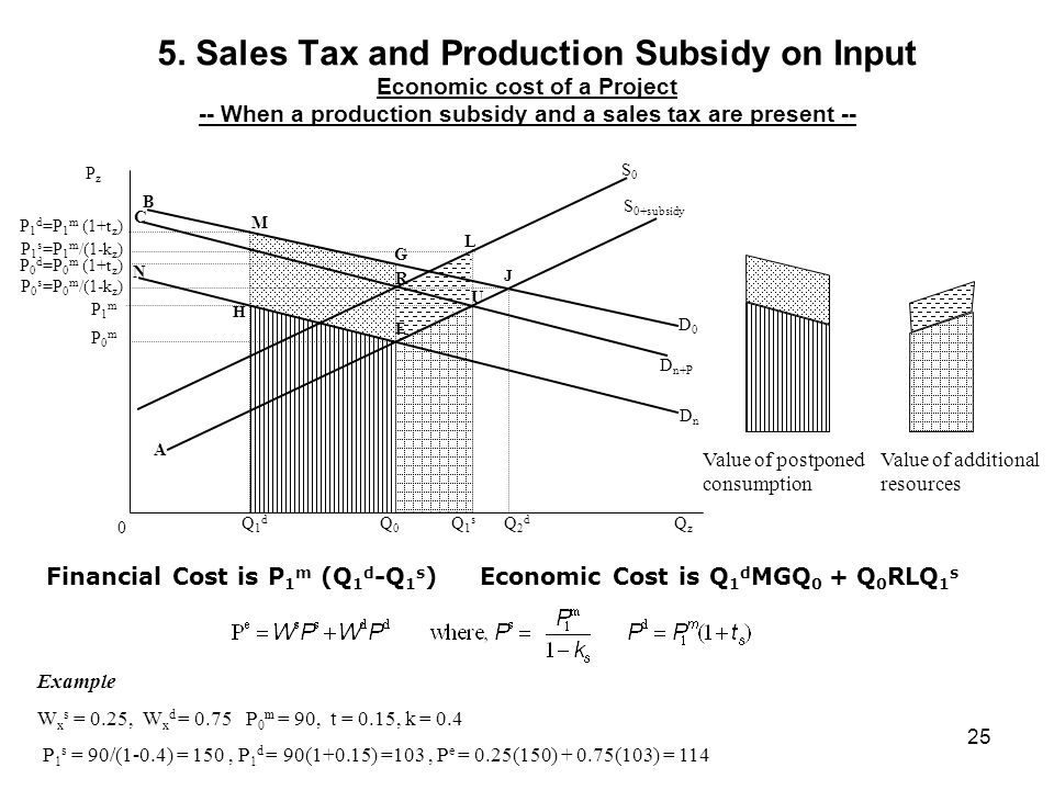 5. Sales Tax and Production Subsidy on Input