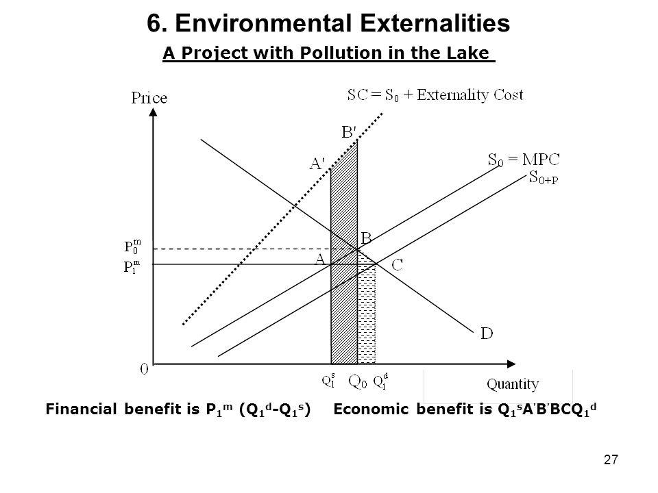 6. Environmental Externalities