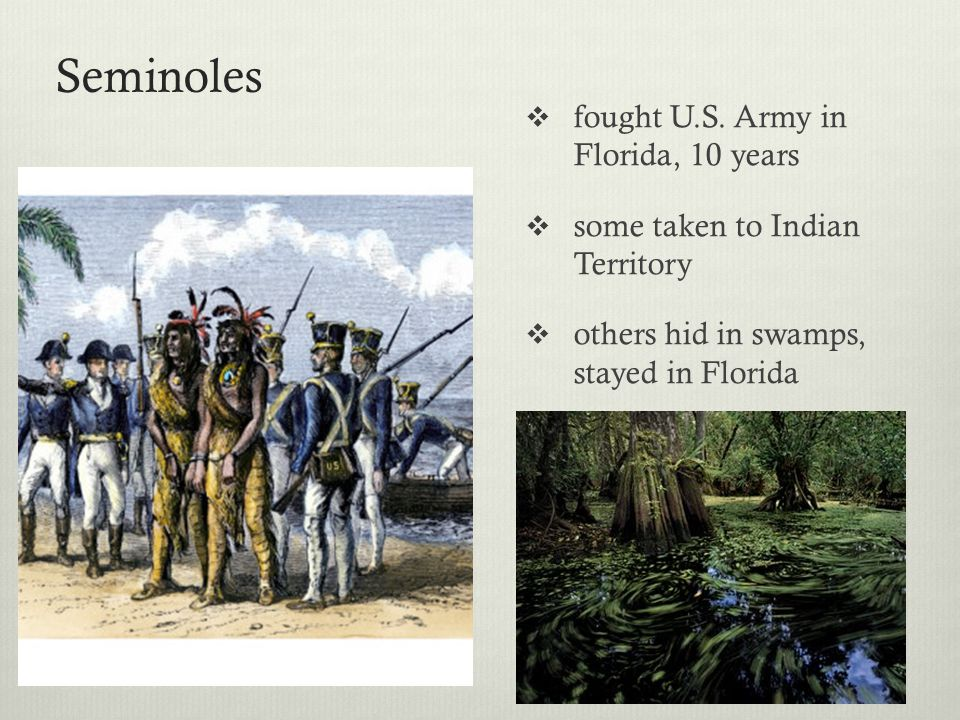 Seminoles fought U.S. Army in Florida, 10 years