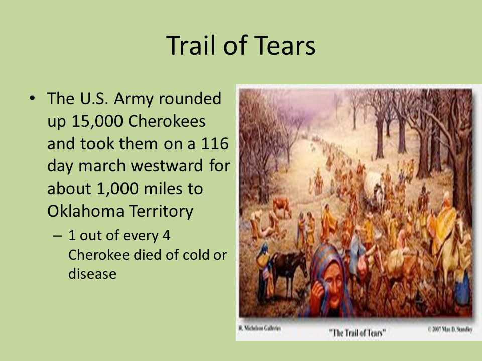 Trail of Tears The U.S. Army rounded up 15,000 Cherokees and took them on a 116 day march westward for about 1,000 miles to Oklahoma Territory.