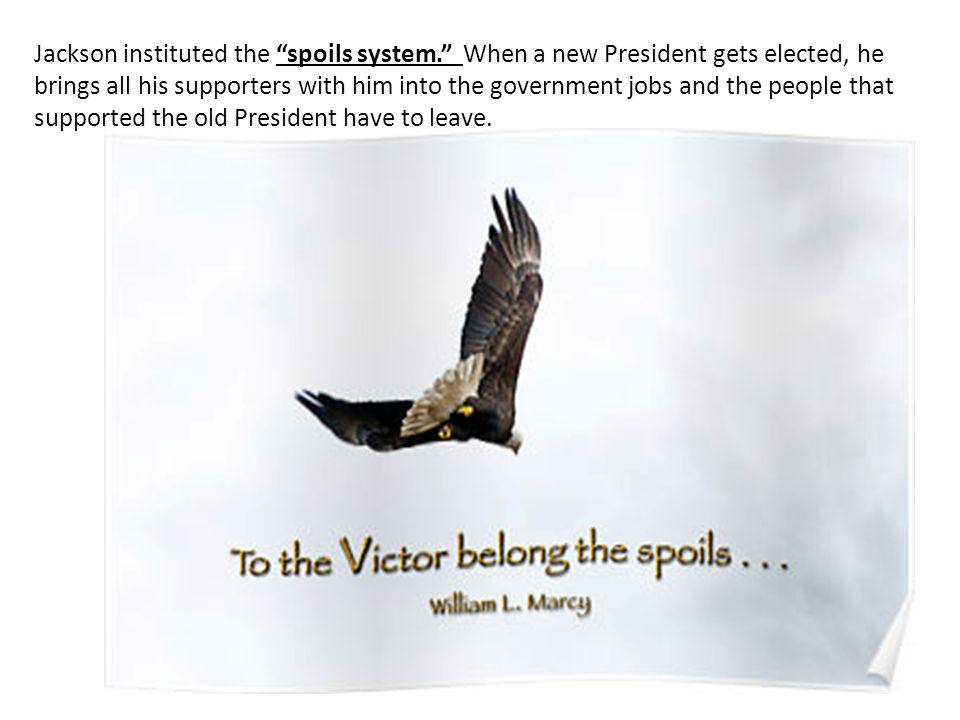 Jackson instituted the spoils system