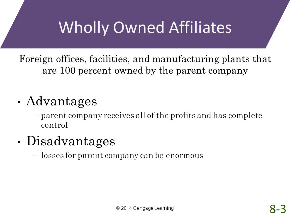 Wholly Owned Affiliates