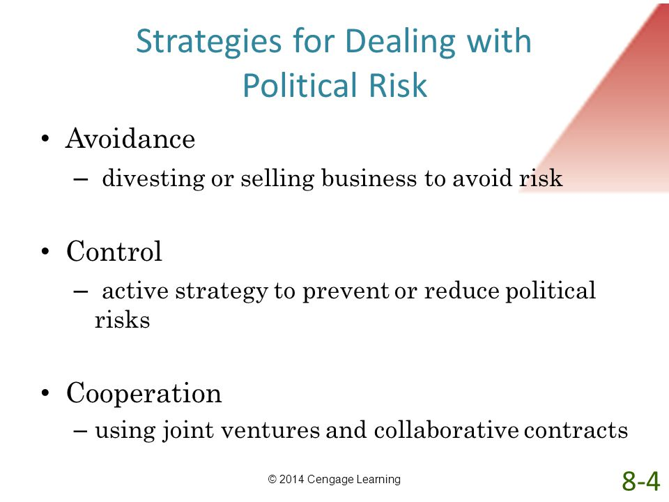 Strategies for Dealing with Political Risk