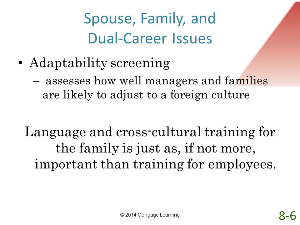 Spouse, Family, and Dual-Career Issues