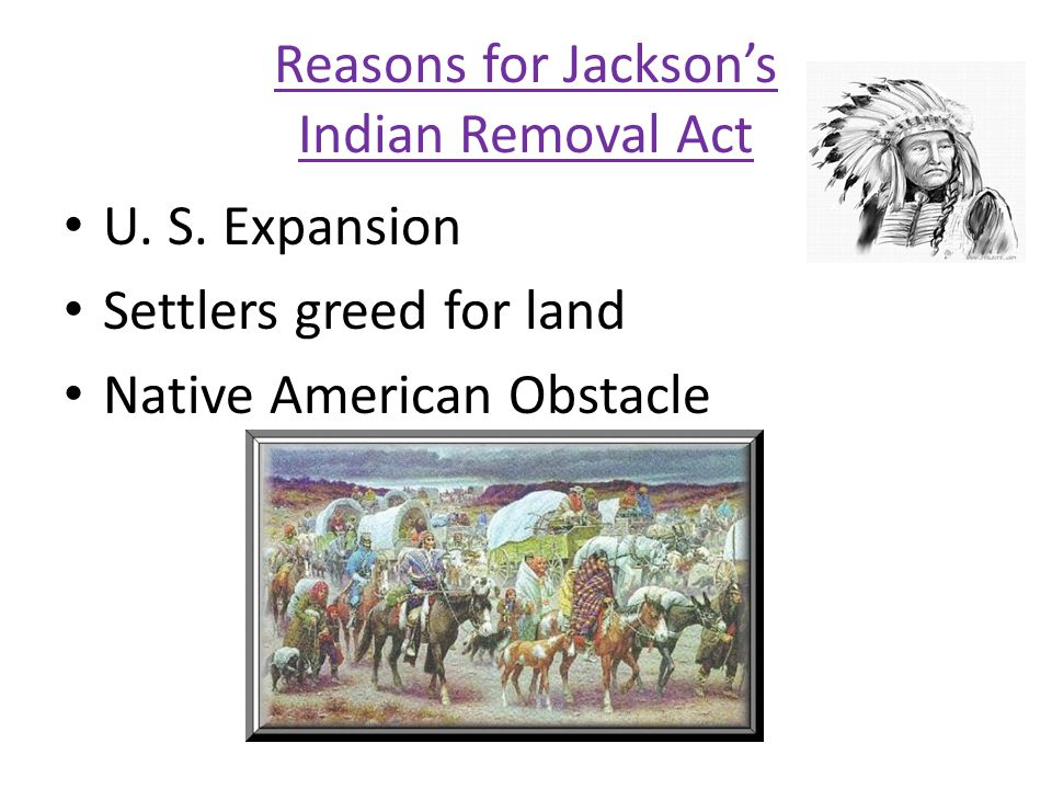 Reasons for Jackson's Indian Removal Act