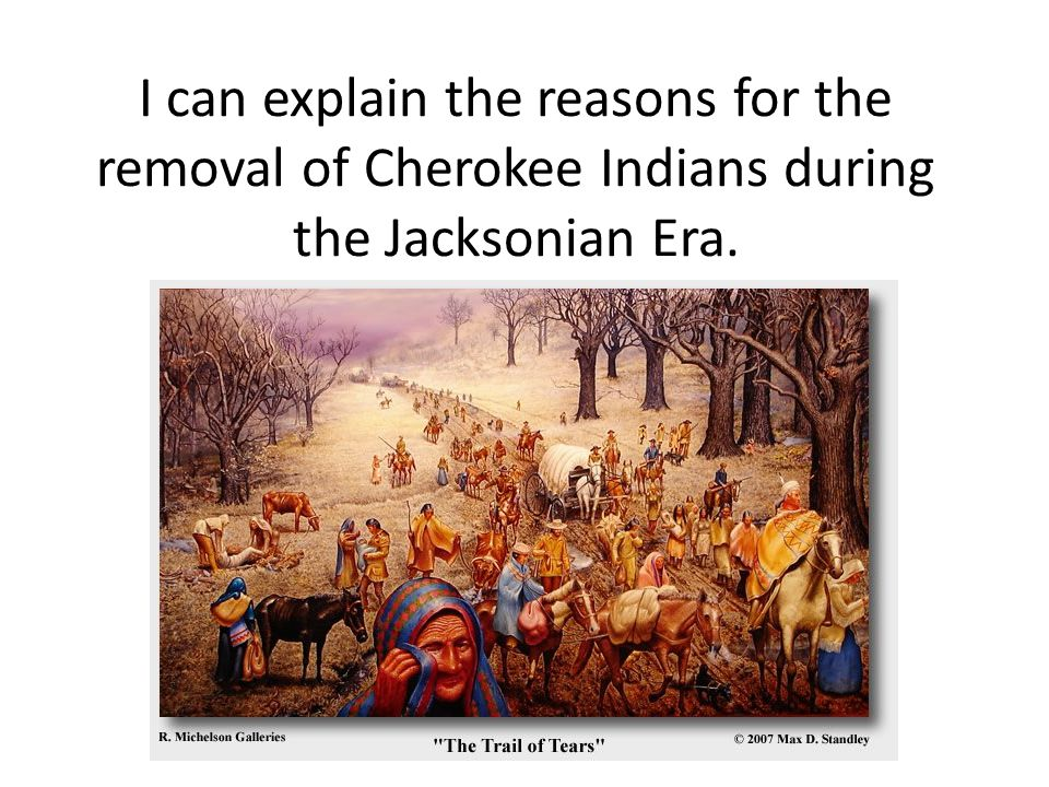 I can explain the reasons for the removal of Cherokee Indians during the Jacksonian Era.