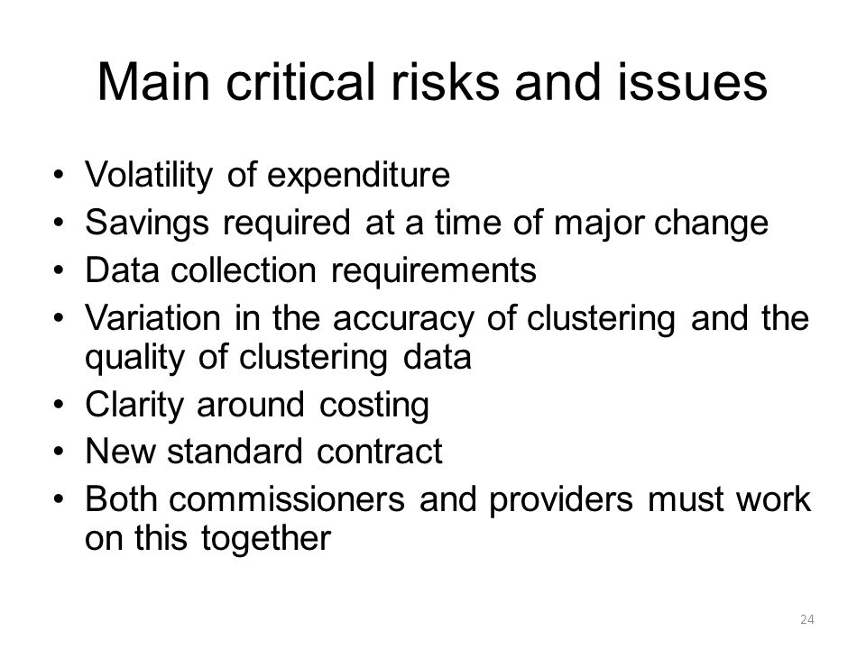 Main critical risks and issues