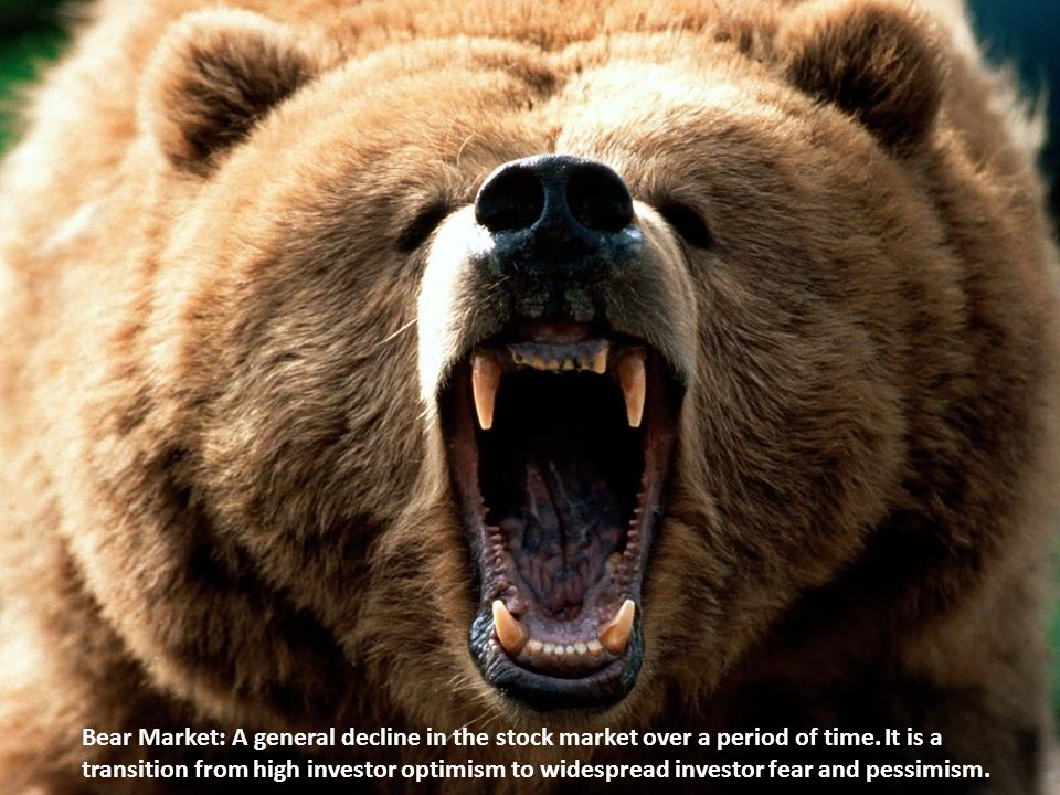 Bear Market: A general decline in the stock market over a period of time.