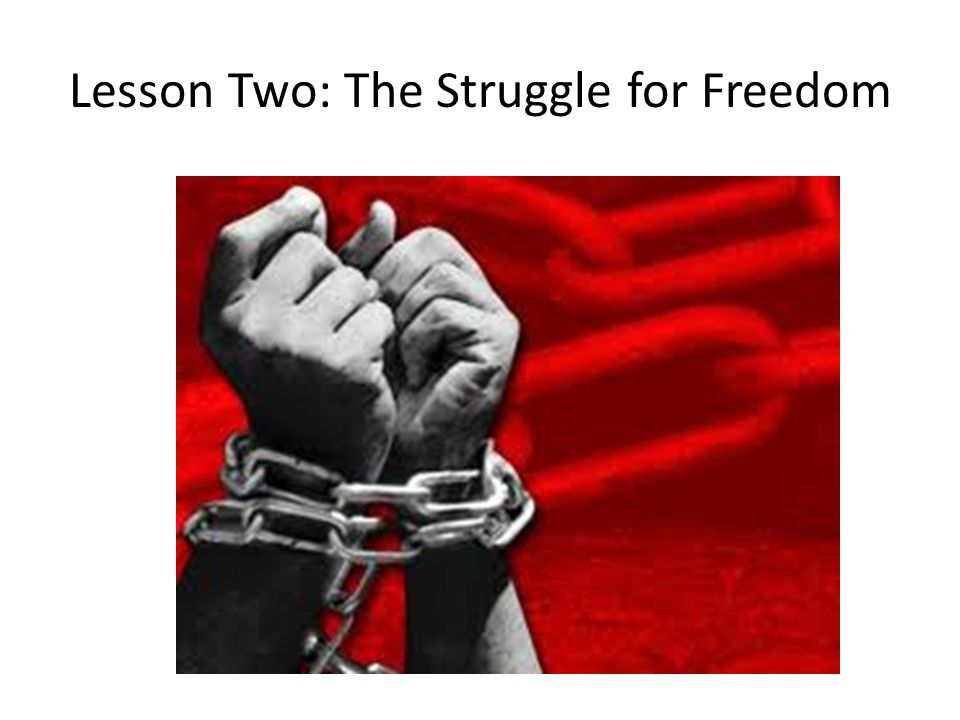 Lesson Two: The Struggle for Freedom