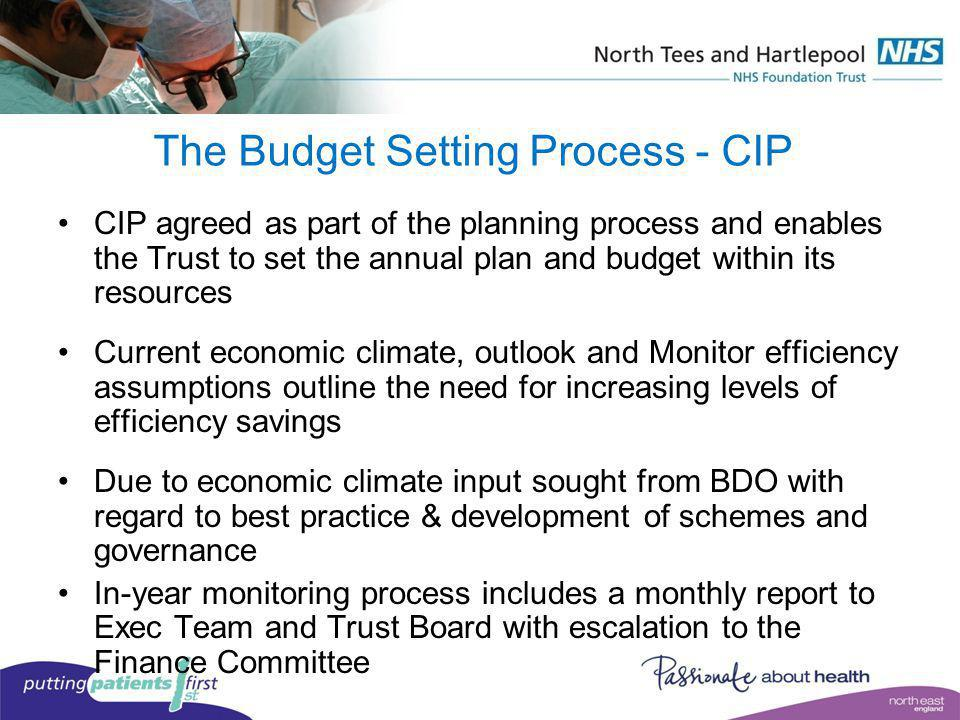 The Budget Setting Process - CIP