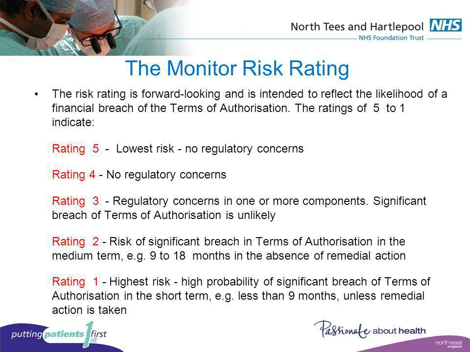 The Monitor Risk Rating