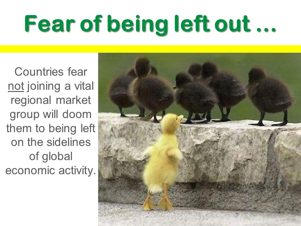Fear of being left out …