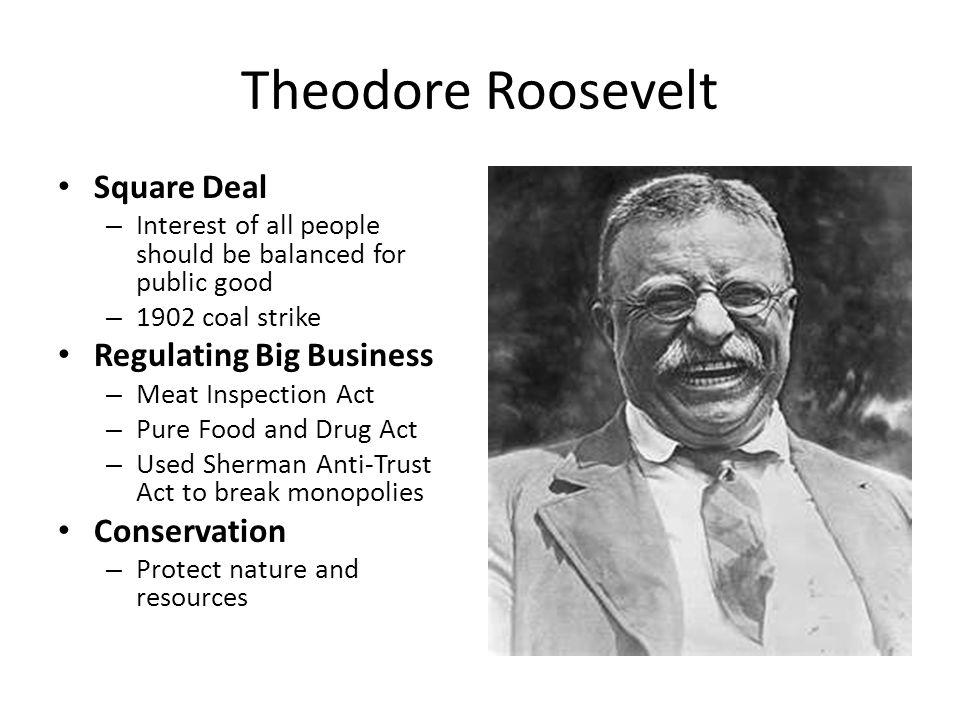 Theodore Roosevelt Square Deal Regulating Big Business Conservation
