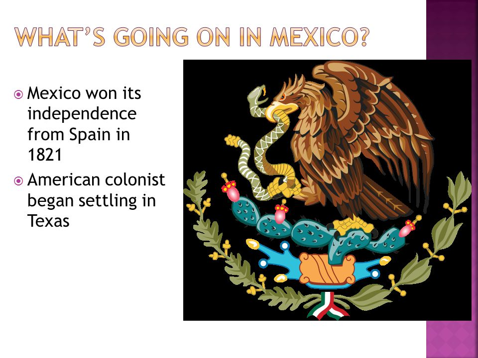 What's going on in Mexico