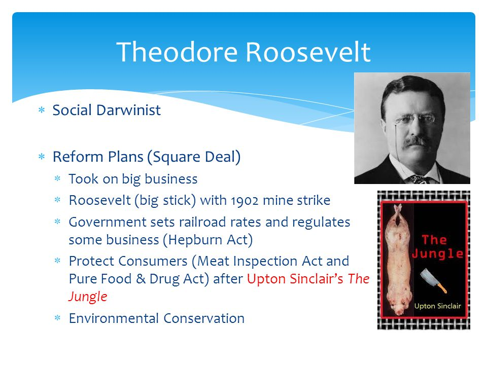 Theodore Roosevelt Social Darwinist Reform Plans (Square Deal)