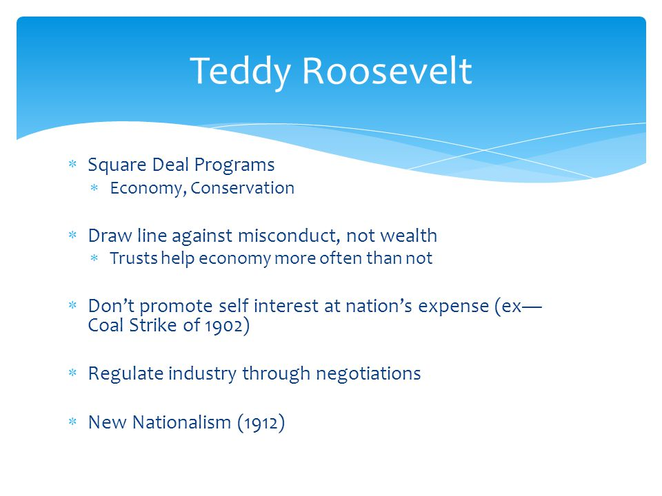 Teddy Roosevelt Square Deal Programs