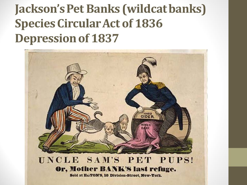 Jackson's Pet Banks (wildcat banks) Species Circular Act of 1836 Depression of 1837