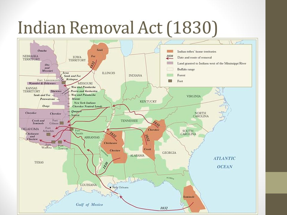 thesis statement for indian removal act