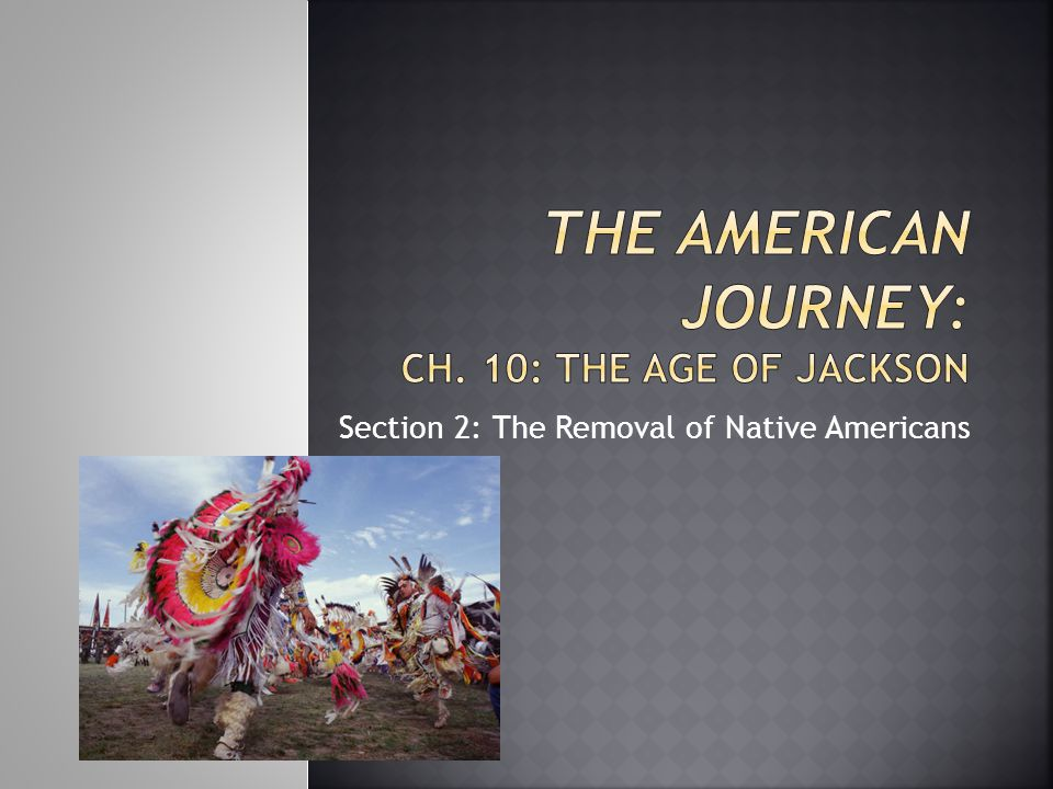 The American Journey: Ch. 10: The Age of Jackson