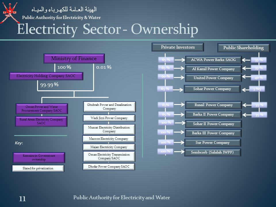 Electricity Sector - Ownership