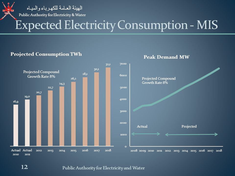 Expected Electricity Consumption - MIS