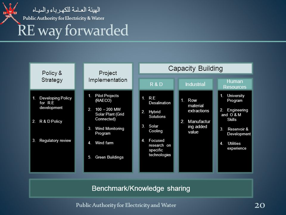 RE way forwarded Capacity Building Benchmark/Knowledge sharing